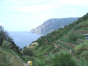 Mountain scene in Cinque Terre.
