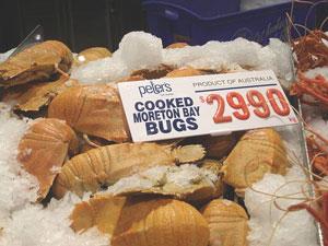 Moreton Bay bugs