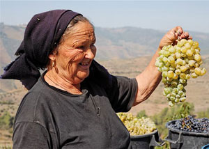A woman offers grapes to passersby in the Douro River Valley.