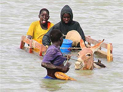 A donkey cart in the Niger River