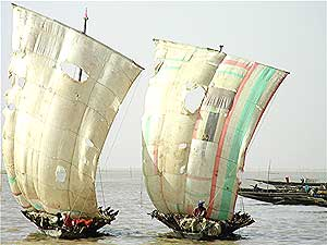 Sailboats on the Niger River