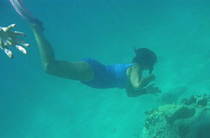 Snorkeling in Nevis is a visual paradise