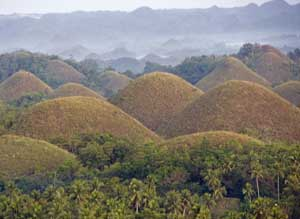 There are more than a thousand 'Chocolate Hills' on Bohol.