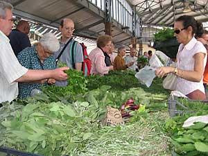 Farmer's market bounty in Torino