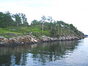 One of the many beautiful little islands in Penobscot Bay