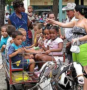A goat cart ride