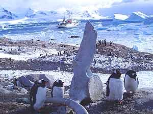 Guarding the whale bones
