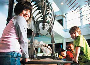 The Science Museum of Minnesota - photo courtesy of the museum