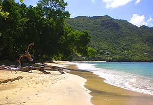 A beach on Lower Bay