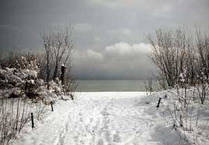Snowy desert - Sopot beach during winter time