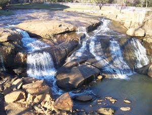 Reedy River Falls is a sight to behold with its grace and beauty.