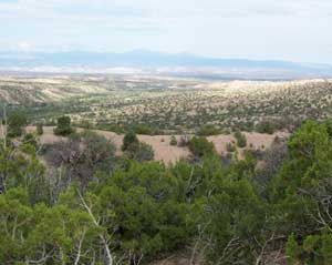 Rolling New Mexico landscape