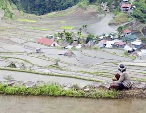 The rice terraces in Banaue are a UNESCO World Heritage site.