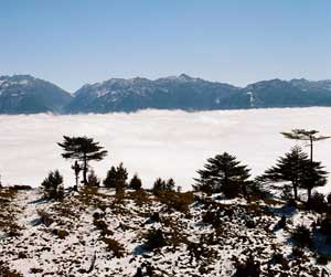 A sea of clouds and snow in the mountains above Tawang - photos by Lakshmi Sarath