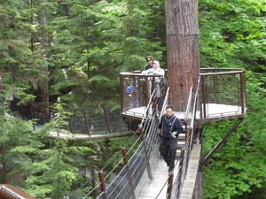 Canopy walking at the Capilano Suspension Bridge complex