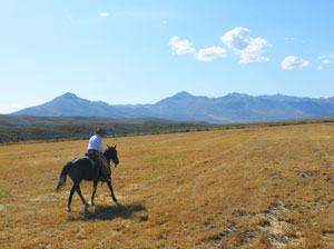 Riding the range at the 71 Ranch in Elko County, Nevada - photos by Stephen Hartshorne