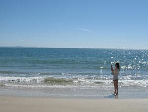 A beach in Florianópolis