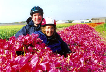 Buried in a pile of red tulip blossoms - photos by Patty McCrary