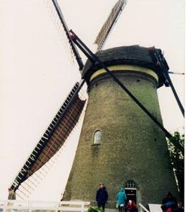 A windmill in Kinderdijk