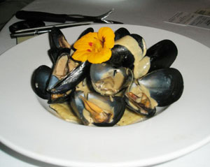 Mussels and Ravioli in an Oyster Cream Sauce at La Leche