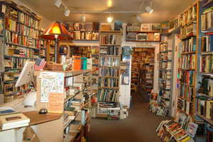 The Serendipity Bookstore