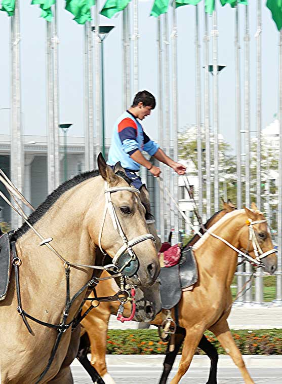 Turkmenistan is famous for its Akhal-Teke horses, the father of the modern thoroughbred.