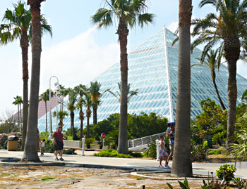 The pyramids of Moody Gardens