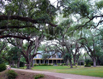 Approaching the main house at Butler Greenwood Plantation. Photo by Henry Cancienne.
