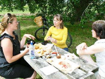 A picnic in the Wairarapa District of New Zealand