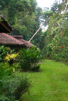 Bungalow at Walindi