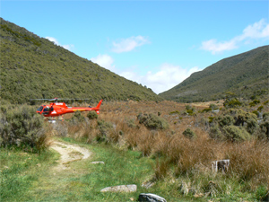 The vast Heaphy Track, gorgeous place to hike in New Zealand.