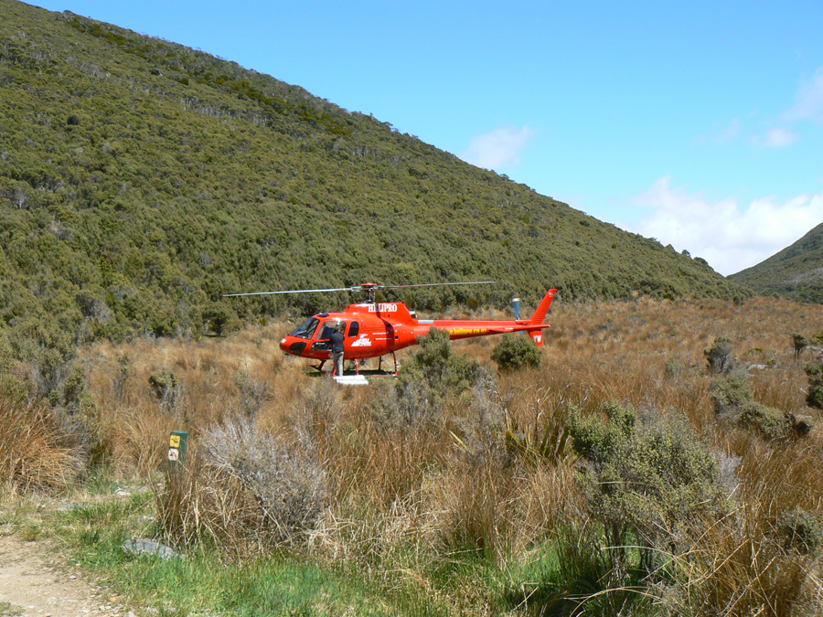 Along the Heaphy Track
