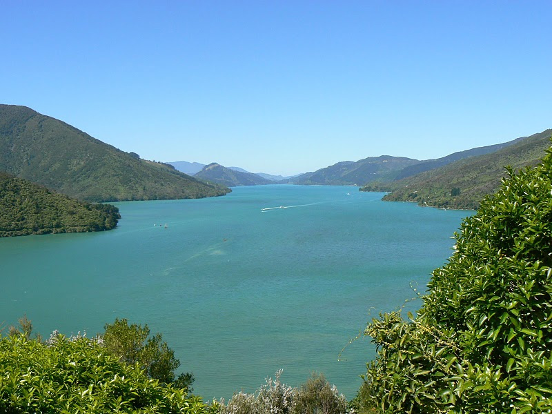 Queen Charlotte Sound, New Zealand.