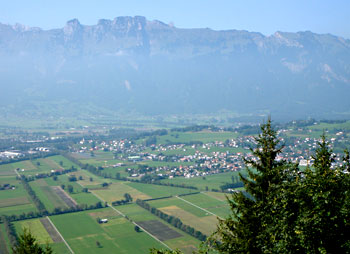 View of the Rhine Valley and the slopes facing the valley from Planken