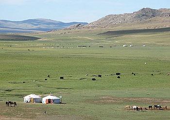 Mongolia in summer.