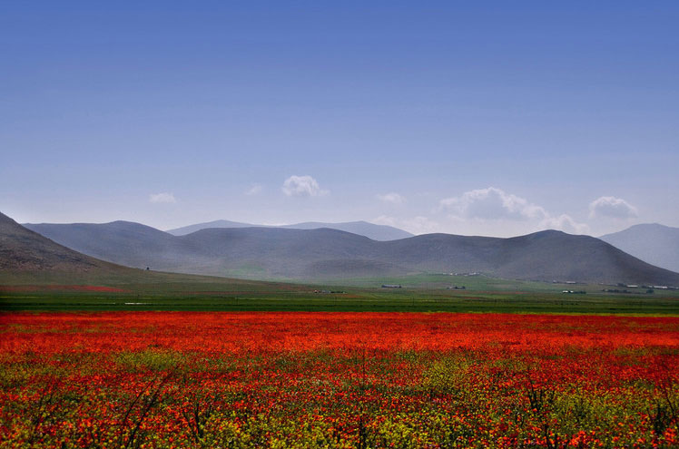 The Algerian Countryside, photo by Didier Wuthrich.