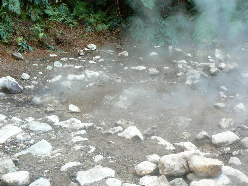 The bubbling cauldron at the Caleira Velha, near Ponta Delgado, Azores