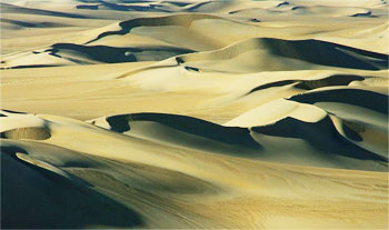 Dunes at the oasis. photos by Robin Graham.