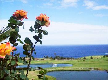 Overlooking the golf course in Buenavista.