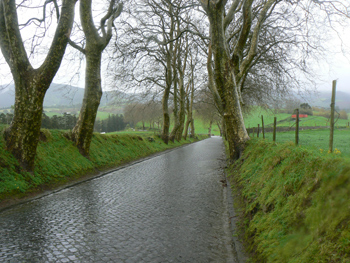 Cobblestone country lanes are common on Sao Miguel, the largest of the nine Azores Islands. Photos by Max Hartshorne.