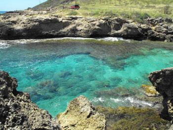 Awesome little cove near Ka'ena Point (I snorkeled here).