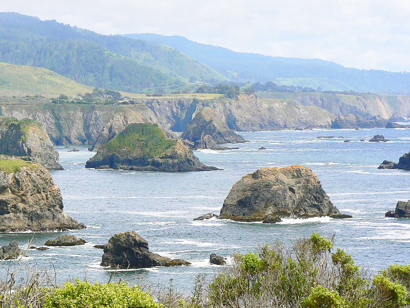 Coastline at Fort Bragg, California. Photo by Max Hartshorne.