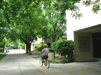 Biking past the Bee, the newspaper of Sacramento. The office used to be a brewery.