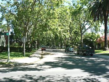 The Fabulous Forties, a beautiful neighborhood in Sacramento.
