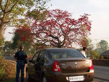 On our way to Kolkata