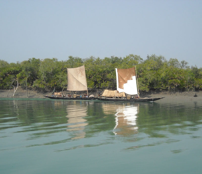 Peace and tranquility in the Sundarbans in West Bengal