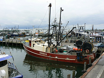 The fishing hamlet of Galilee, in the town of Point Judith, on the tip of Southern Rhode Island. It's home to a large fishing fleet.