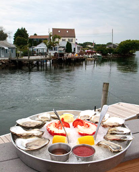 Matunuck oysters. Photo by Paul Shoul.