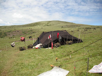 A nomad tent on the grasslands
