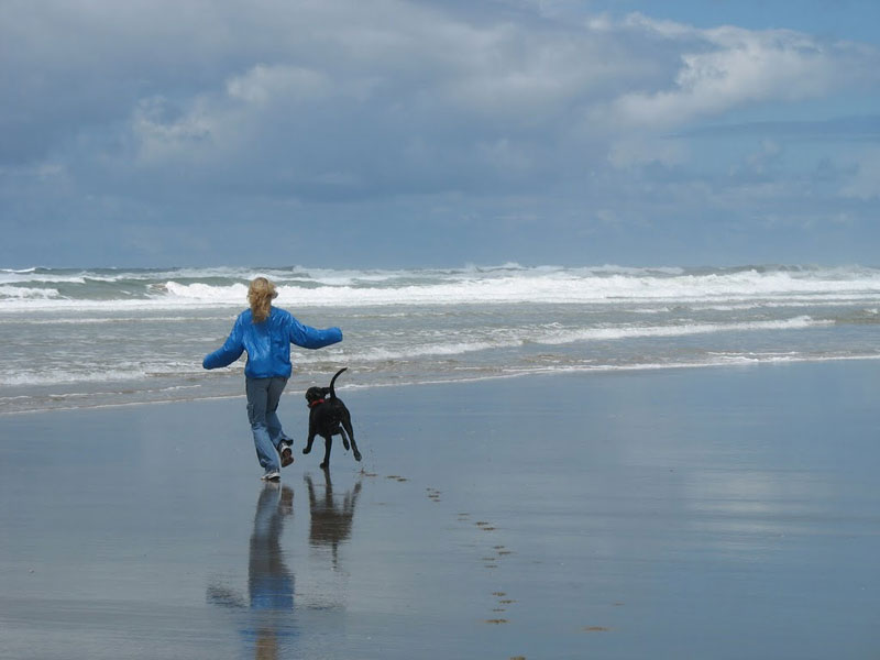 No leashes necessary on the Oregon Coast